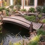 gardening pond-2