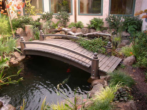 Spanish ponds water gardens a decorative addition spain info for Ornamental fish pond maintenance