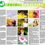 Allergies gardening