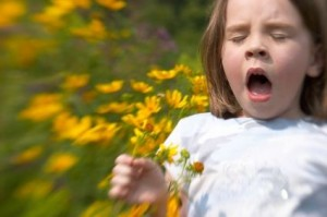 Sneezing Flower Pollen Allergies