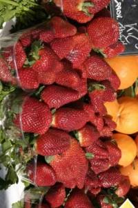 Strawberries 5.jpg-for-web-LARGE