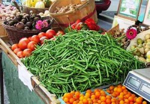 Bush Beans bush-beans-8