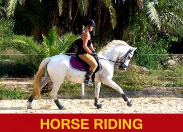 El rancho Horse Riding