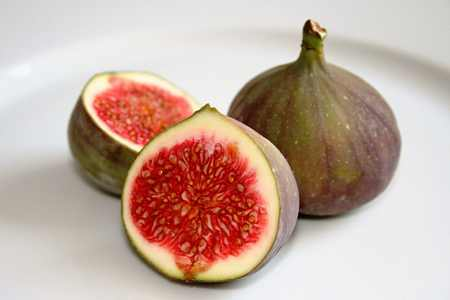 Fig view