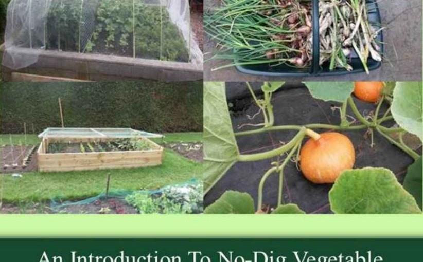 no dig garden