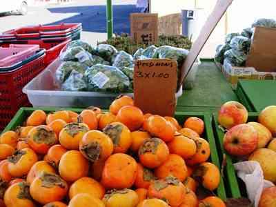 Costa Blanca Markets