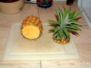 Pineapple PROPERGATION pineapples