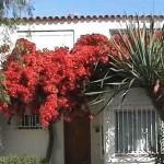 Tenerife information Costa-Silencio-house Tenerife