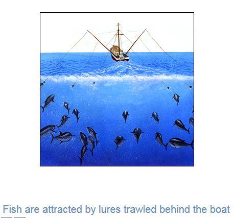 fishing-info Fishing Info
