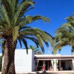 Jardin-de-Mitjorn-Formentera Holiday Rentals