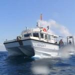 Volante-flip Sea Fishing