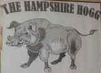 hampshire-hogg