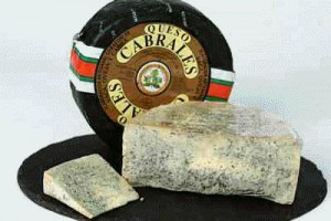 Cheese queso cabrales cheese Spanish Cheese Listings