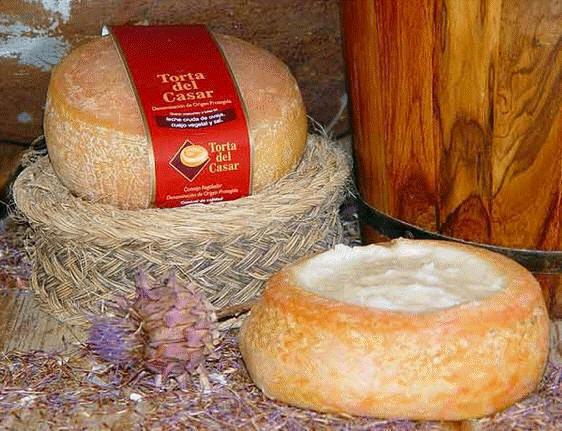 Torta-del-Casar-Cheese Torta del Casar