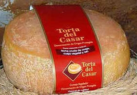 Cheese Spain Index Torta-del-Casar-Spanish