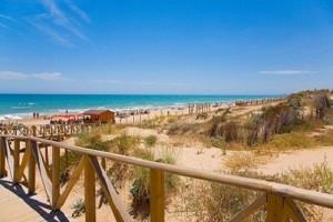 Hotel Information Playa-Del-Campo-guardamar-dunas