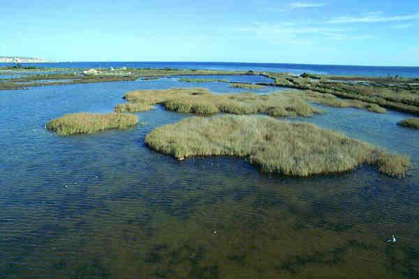 Santa Pola Natural Park Ariel