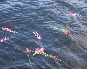 ash-flowers-on-sea Sea Fishing