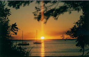 Ash-sunset