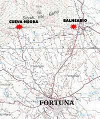 Fortuna Plan