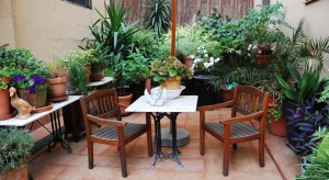 Bed and Breakfast Barcelona The Patio B&B