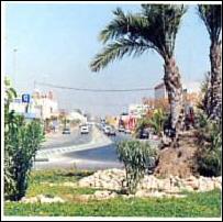 almoradi street
