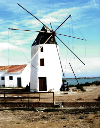 Windmill San Pedro Natural Park