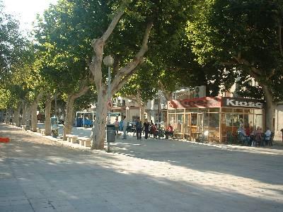 Oliva town-scene holiday Oliva