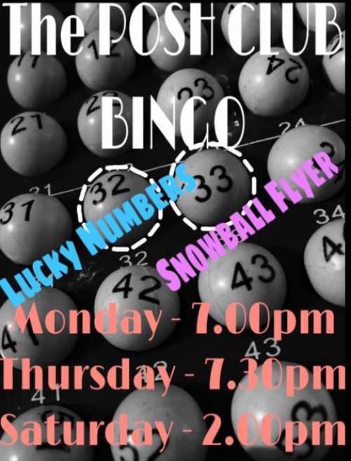 bingo lucky numbers