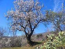 Dates Sierra Nevada Public Holiday Dates