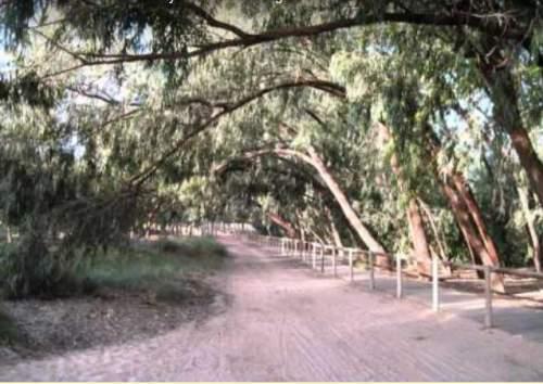 La Mata Natural Park