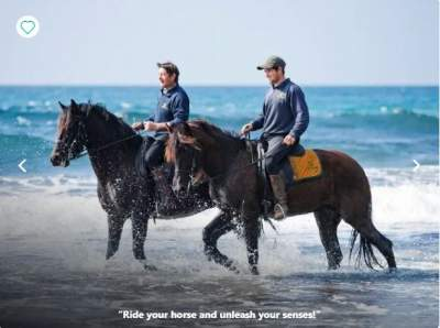 Balearic Islands Horse Riding