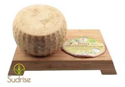 Goat Sheep Cheese Italian