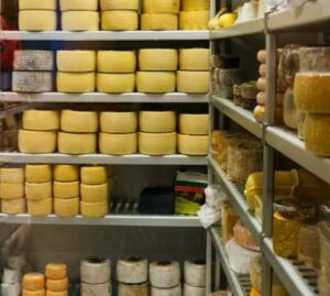 Spanish selection of Wheels of Cheese